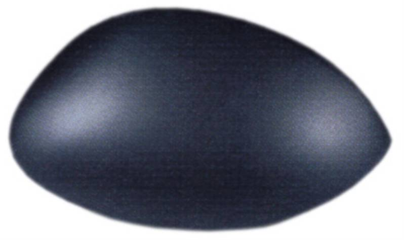 Coque noire r troviseur droit peugeot 206 plus 206 for Retroviseur exterieur peugeot 206